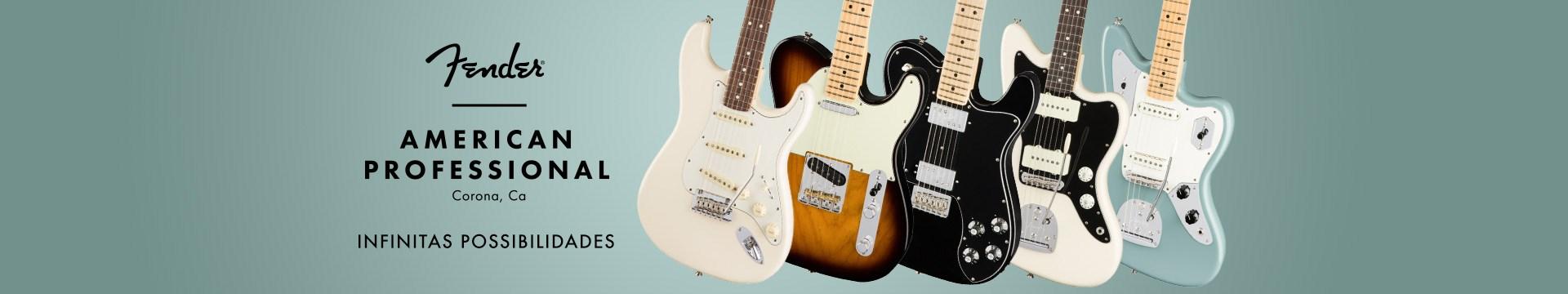 Fender Professional