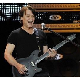 Guitarra Wolfgang Standard Eddie Van Halen EVH