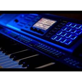 Teclado Arranjador MZ X500 com 61 Teclas Casio - Azul (Blue) (BL)