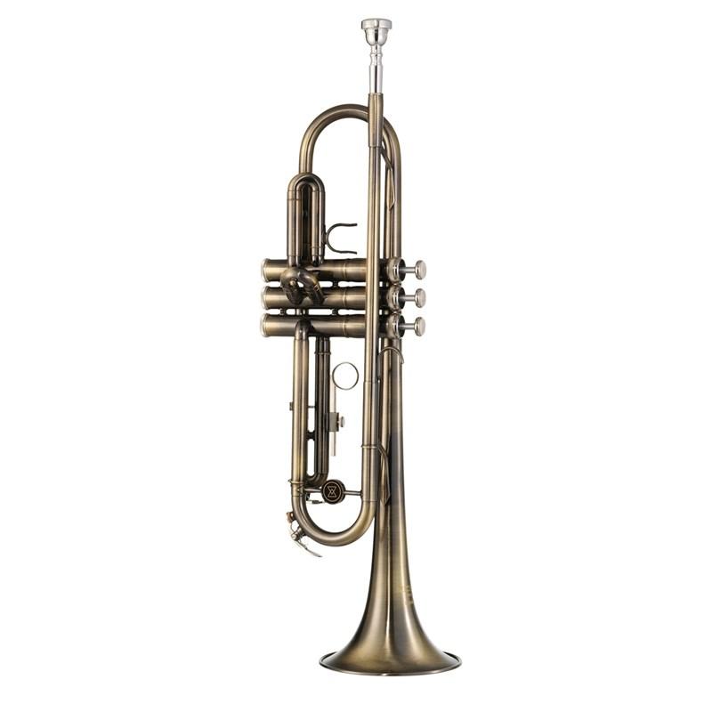 Trompete Escovado WTRM56 BB Michael
