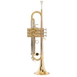 Trompete  WTRM66 BB Michael