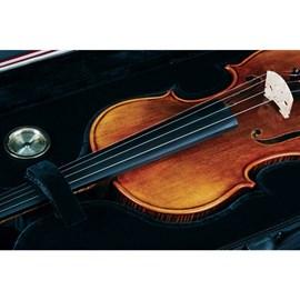 Violino 4/4 VK 544 Envelhecido com Case Eagle