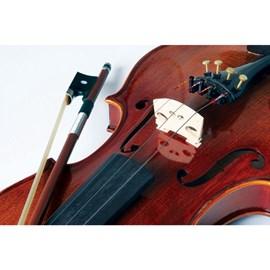 Violino 4/4 VK 644 Envelhecido com Case Eagle