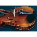 Violino 4/4 VK544 Envelhecido com Case Eagle